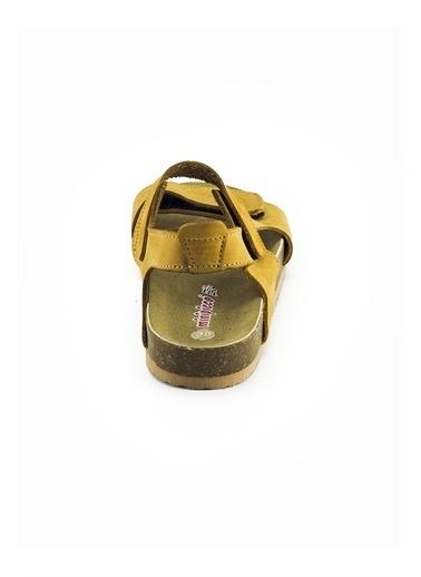 minipicco Minipicco Erkek Cocuk Cat Deri Ortopedik Destekli Çocuk Sandalet Renkli